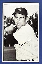 Yogi Berra Union Novelty Co Postcard New York Yankees