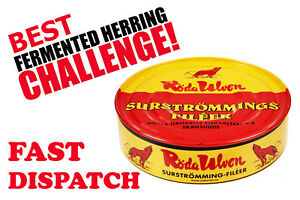 Surströmming SURSTROMMING HERRING CHALLENGE EATING PRANK, Bachelor party