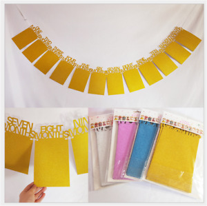 Glitter Birthday 1-12 Mos Photo Frame Party Decoration Shower Bunting Banner