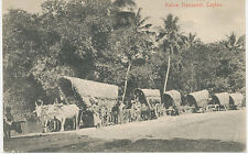 CEYLON 1910 Native Transport – very fine unused b/w old vintage postcard