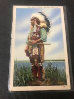 Vintage postcard Colonel Chief Yellow Thunder Wisconsin Great Picture Dells I01