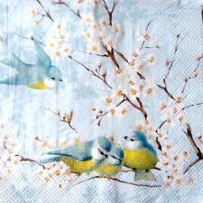 4 serviettes en papier napkins découpage collage 33 cm OISEAU BRANCHE FLEUR