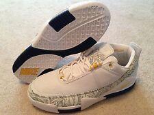 "Nike Lebron 2 Low ""Michigan"" PE Sz 13 Rare Promo Sample"