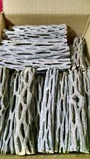 "Cholla Dried Cactus Wood 300 Pieces  4"" L"