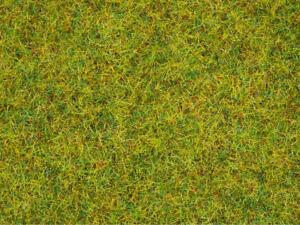 Noch 08310 Streugras Sommerwiese 2,5 mm