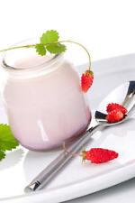 Coconut yogurt starter, vegan, gluten dairy free everlasting starter