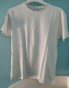 men's t-shirt S  - Primark regular fit - never worn - pale grey