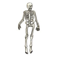 ID 0884 Human Skeleton Patch Halloween Decoration Embroidered Iron On Applique