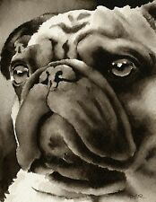 Pug Art Print Sepia Watercolor Painting by Artist DJR