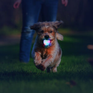 Ultra LED Dog Ball Toy Light Up Pet Flashing Toys Throw Ball Bounce Interactive