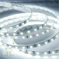 INDOOR AND OUTDOOR FLEXIBLE STRIP LIGHT 5M COOL WHITE 6000K 12V SMD 2835 LED