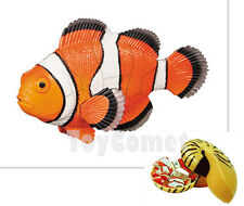 Clownfish Coral Fish Animal Part III 4D 3D Puzzle Model Kit Toy