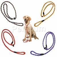 Nylon SLIP Rope Dog Training Lead Leash Show Halter Control 10 MM x 150 CM