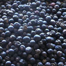 Baies De Genévrier Juniperus communis herbe séchée, loose Natural Tea 50 g