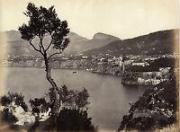 Italia Sorrento Napoli Albumina Vintage Albume D'Uovo Ca 1870