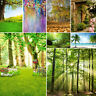 10*10Ft Vinyl Nature Forest Photography Backdrops Studio Photo Background Props