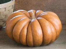 Seeds Pumpkin Muscat De Provence Giant Vegetable Organic Heirloom Russia Ukraine