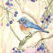 4 Single Paper Napkins for Decoupage Peter in the Tree Bird Berry Branch