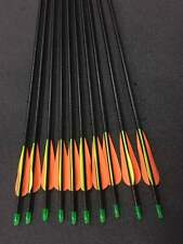 "10x 26"" Fiberglass Arrows Upto 30lb for Kid Practice Target Recurve Compound Bow"