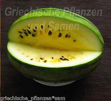 🔥 🍉 Mini-Wassermelone THAI YELLOW BABY gelb* Melone 5 Samen