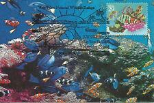 Reef Fish Marine Life Fdc Usa Maximum Card