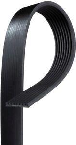 Serpentine Belt  ACDelco Professional  8K585