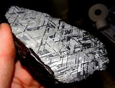 AMAZING 620 GM. MUONIONALUSTA ETCHED METEORITE END CUT