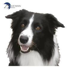 BLUE MOON GRAPHIX Sticker  Moto Car IPad PC Mobile DOG PET BORDER COLLIE BMG0039