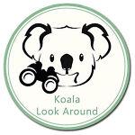Koala Look Around