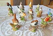 More details for garden birds beautiful birds collection 11x vintage porcelain/china models