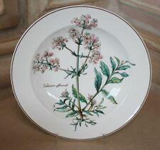 Frühstücksbrettchen 21,5x14,3 cm Oxalis acetosella.. Villeroy /& Boch Botanica