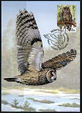 2015. Belarus. Bird of the year. Long-eared owl. Maximum card