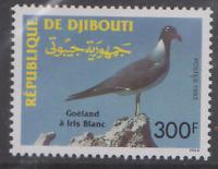BIRD239 - DJIBOUTI 1993 BIRDS VÖGEL OISEAUX GULL MNH