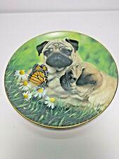 Pug Dog Collectible Plate - Pug Eyes By Simon Mendez