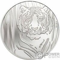 HIDDEN TIGER 1/2 Oz Silver Coin 250 Togrog Mongolia 2019