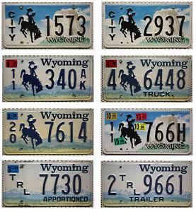 -1- WYOMING Nummernschild AUSWAHL / Ein USA Kennzeichen geprägt License Plate US