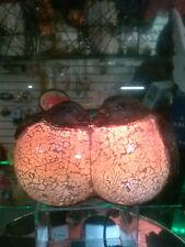 Peach Chickadee Tiffany Lamps