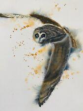 "Original Watercolour Painting British Bird Owl In Flight 9""x12""  A4 by D Coleman"