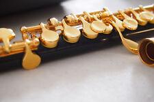 Piccolo Flute Piccolo-ottavino  Flûte Piccolo Piccolo/Flauta de Flautin 24 Gold