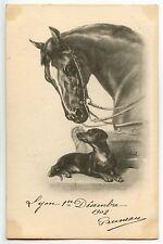 CHEVAL HORSE   DACHSHUND  TECKEL . DOG CHIEN . DACKEL