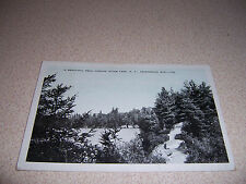 1920s A BEAUTIFUL TRAIL AROUND OTTER LAKE NY. ANTIQUE POSTCARD