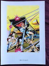 Dave Stevens Poster Fantasy/Pin Up Poster ~Hot Cargo~