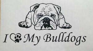 1x English Bulldog Dog Love Pet Animal Vinyl Sticker Bumper Decal Graphic 8x4in