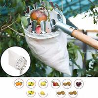 Outils de jardinage Cueilleur de fruits Métal Outils de cueillette Catc