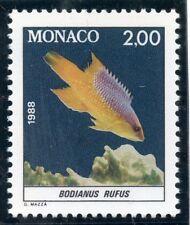 STAMP / TIMBRE DE MONACO N° 1615 ** FAUNE / POISSON / BODIANUS RUFUS