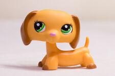 Littlest Pet Shop LPS Golden Yellow Dachshund #2597 w/Brown Ears Lime Green eyes