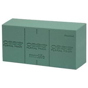 OASIS Florist Green Foam /Please Choose Qty/