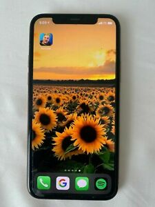 Apple iPhone 11 Pro Max 256GB fortnite installed - Unlocked carrier
