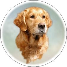 2 Golden Retriever Car Stickers By Starprint - Auto combined postage