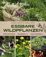 Essbare Wildpflanzen Wildkräuter Kräuter Erkennen Sammeln Zubereitung Buch Baer